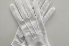 Nylon-Glove