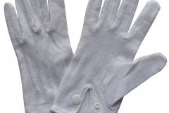 Parade-Glove