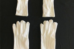 Snap-Glove