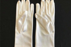Stain-Glove