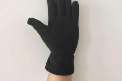 Thinsulate-Fleece-Glove